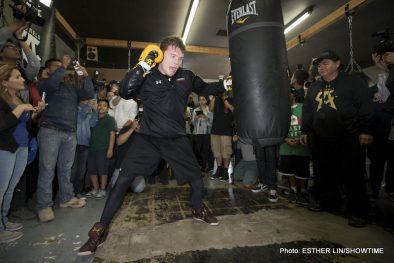 "Alfredo Angulo Canelo vs. Angulo Saul ""Canelo"" Alvarez"
