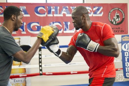 Deontay Wilder, Jason Gavern - This Saturday night #1 WBC Deontay Wilder (31-0, 31 KOs) will be putting his guarantee world title shot against Bermane Stiverne at risk when he faces 37-year-old high level journeyman Jason Gavern (25-16-4, 11 KOs) in a 10 round bout at the StubHub Center in Carson, California.