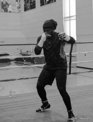 Bermane Stiverne Chris Arreola Boxing News Top Stories Boxing