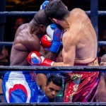 Andre Berto - Boxing Results