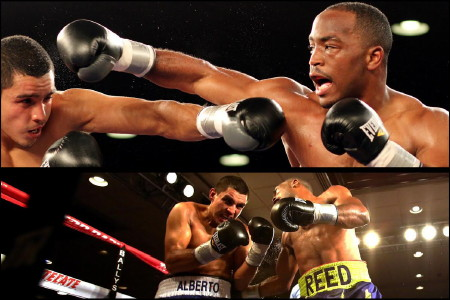 Mike Reed Boxing News