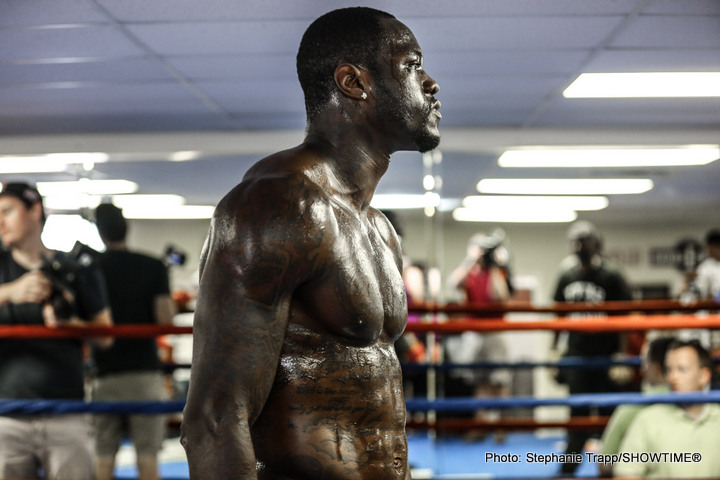 Alexander Povetkin vs. Deontay Wilder is being negotiated