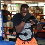 Deontay Wilder Eric Molina Boxing News