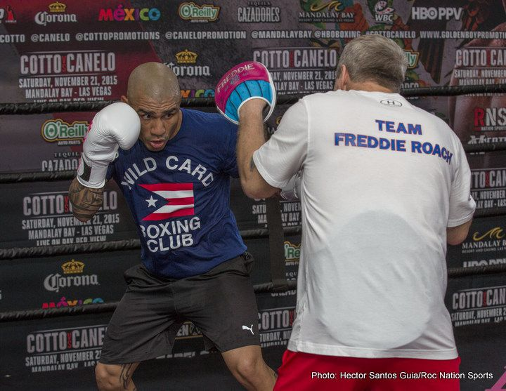 Cotto vs. Canelo Miguel Cotto Boxing News