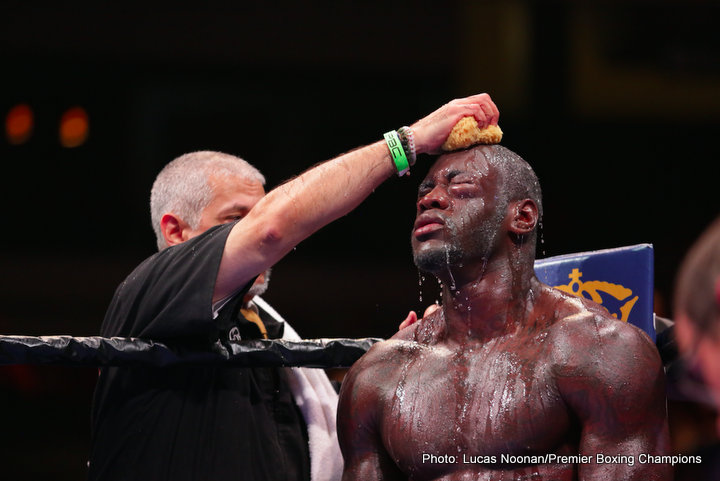 Deontay Wilder Johann Duhaupas Boxing News Boxing Results Top Stories Boxing
