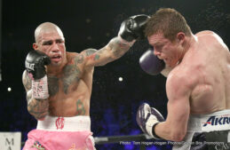"Cotto vs. Alvarez, Miguel Cotto, Saul ""Canelo"" Alvarez - After capturing the WBC middleweight title against Miguel Cotto in their highly entertaining fight in Las Vegas last night, Saul 'Canelo' Alvarez has stated that he will happily fight destructive Kazakh champ, Gennady Golovkin, in accordance with his 'anybody/anytime' boxing philosophy."