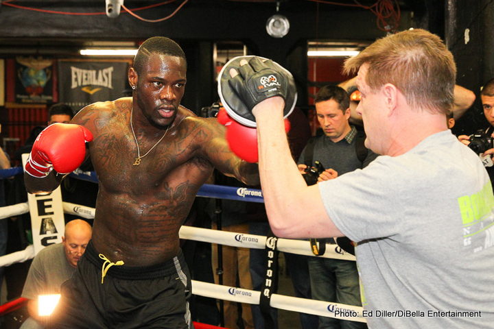 "Deontay Wilder - WBC heavyweight champion Deontay ""Bronze Bomber"" Wilder (35-0, 34 KOs) is promising to knockout Polish challenger Artur Szpilka (20-1, 15 KOs) this Saturday night in their contest on Showtime from the Barclays Center in Brooklyn, New York."