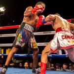 Martin Honorio Michael Angelo Perez Boxing News Boxing Results