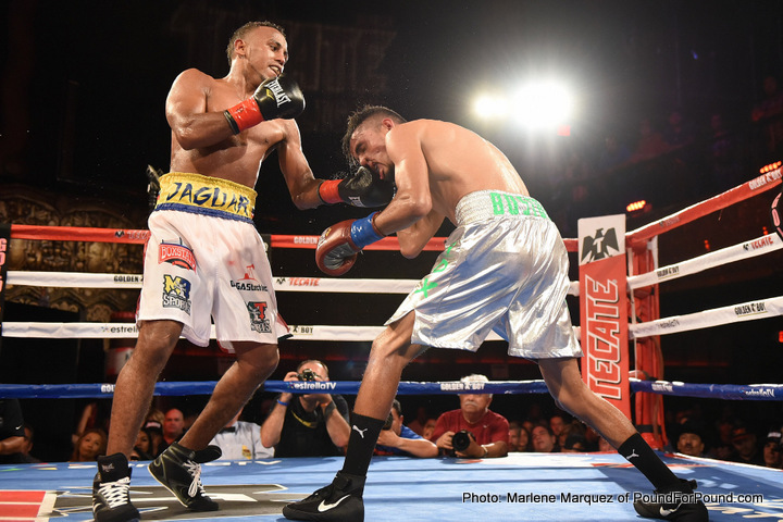 Jose Bustos Oscar Negrete Boxing News Boxing Results