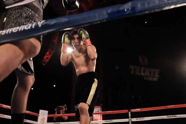 Carlos Morales Luis Franco Boxing News Boxing Results