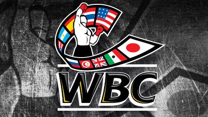 WBC News: Mike Towell, Wilder, Garcia, More