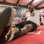 Deontay Wilder Gerald Washington Boxing News