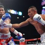 Juan Manuel Lopez, Yuriorkis Gamboa - Both electrifying fighters in their prime, Cuba's Yuriorkis Gamboa and Puerto Rico's Juan Manuel Lopez seemed to have superstar status ahead of them. Both men managed to win a world championship – in fact both fighters won a couple of belts each – but overall the lofty heights that were expected were never reached.