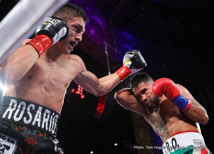 Rene Alvarado - Boxing News