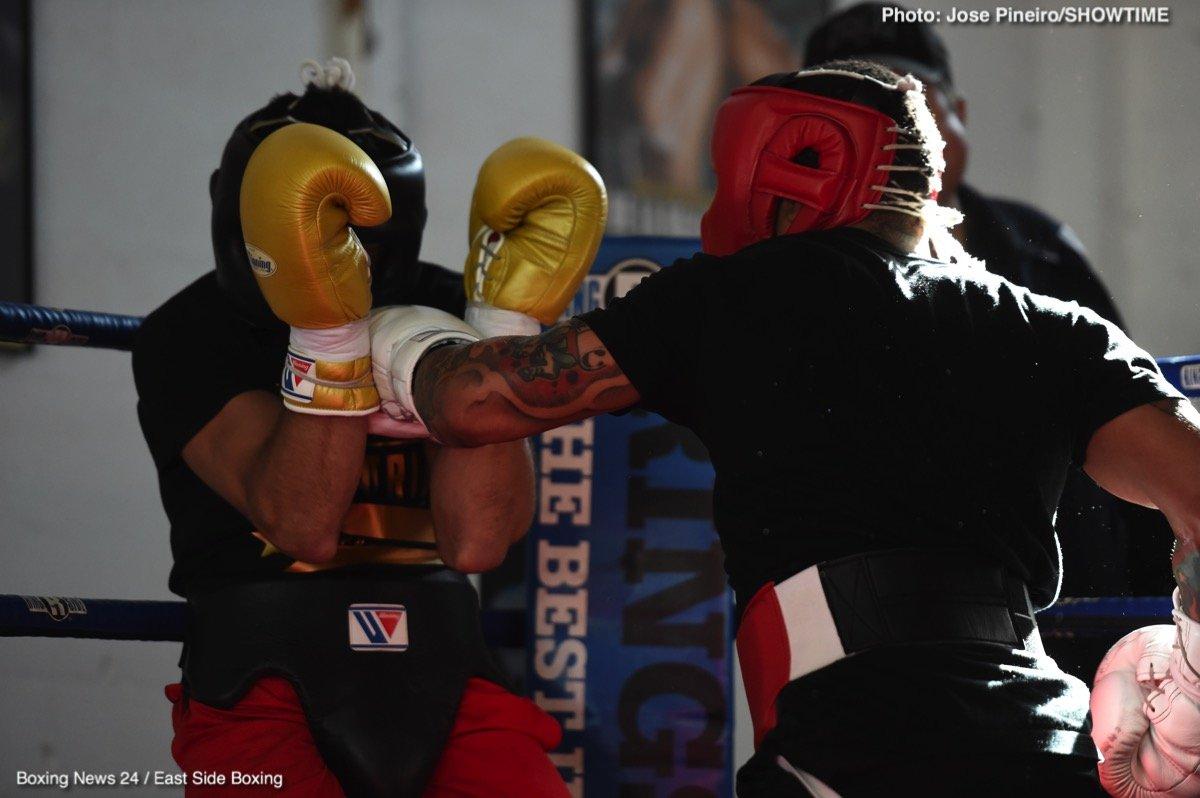 Adrien Broner Gervonta Davis Jessie Vargas Jesus Andres Cuellar Boxing News