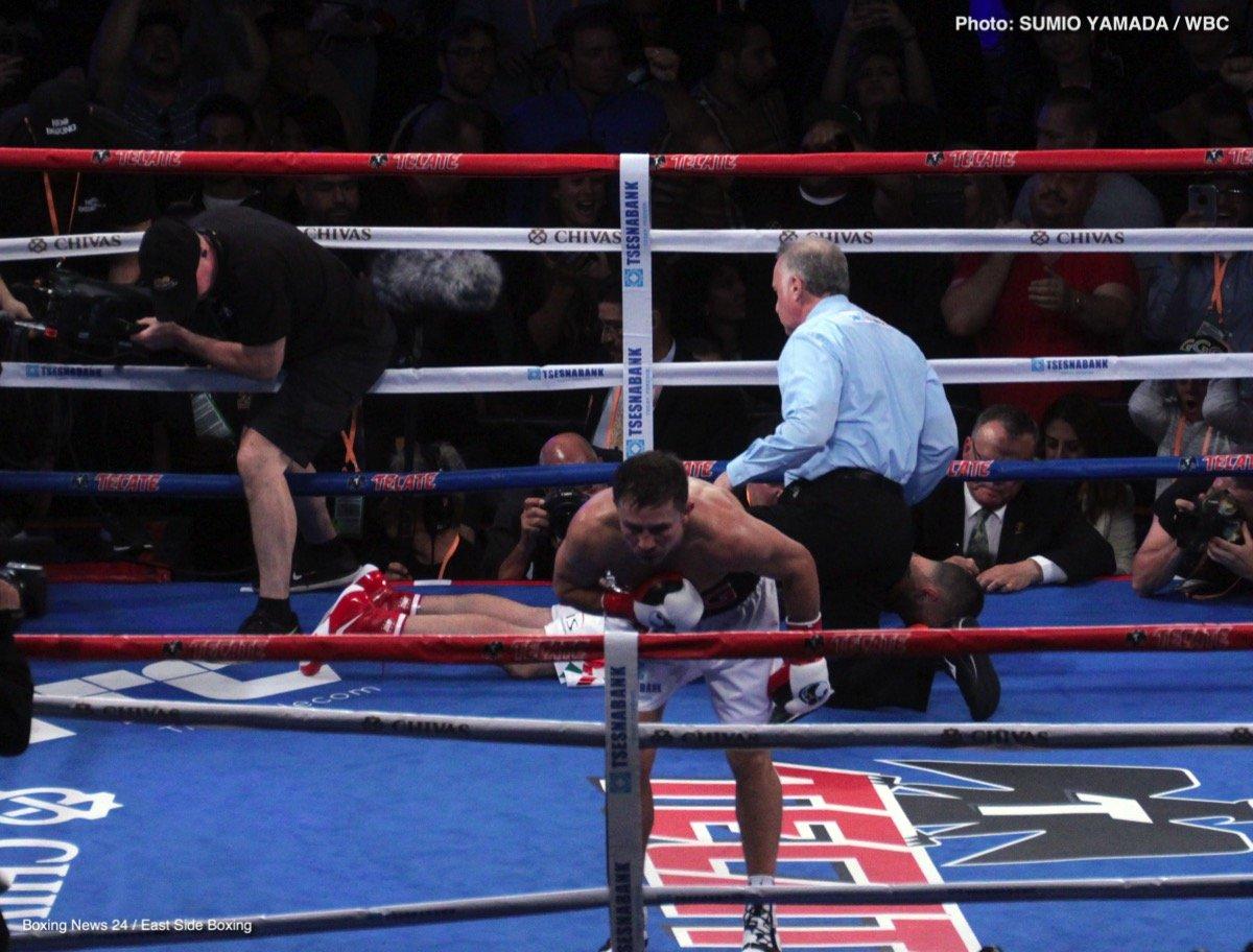 Gennady Golovkin Vanes Martirosyan Boxing News