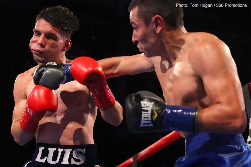 Denis Shafikov Hector Suarez Boxing News Boxing Results