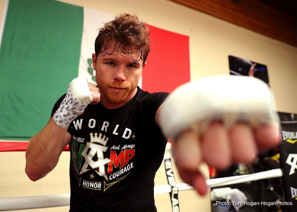 Canelo Blog Part 1: Canelo talks GGG rematch