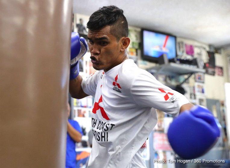 Aston Palicte Donnie Nietes Boxing News