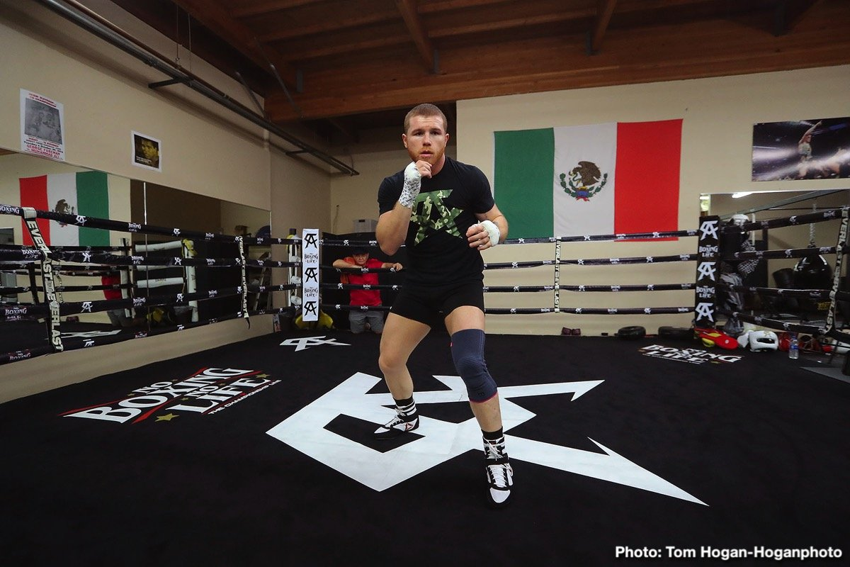 """Canelo Alvarez - Is reigning middleweight king Canelo Alvarez destined to go down as a great fighter who was never given the opportunity to a avenge his sole pro defeat? Canelo has lost just once as a pro – to Floyd Mayweather back in 2013 – and the Mexican star admits he still thinks about the fight; he still has """"that little itch for it,"""" as in for the chance of revenge. It's not yet known if Canelo will go down as a great, but he sure seems to be on his way."""
