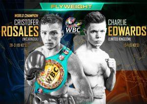 Cristofer Rosales - WBC Flyweight World Championship