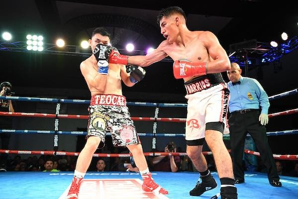 "- Bantamweight Luis Fernando Saavedra (8-6, 3 KOs) handed Mario Hernandez (8-1-1, 3 KOs) his first loss in what amounted to an upset win in the ""New Blood"" main event Friday night from the Doubletree Hotel in Ontario, Calif."