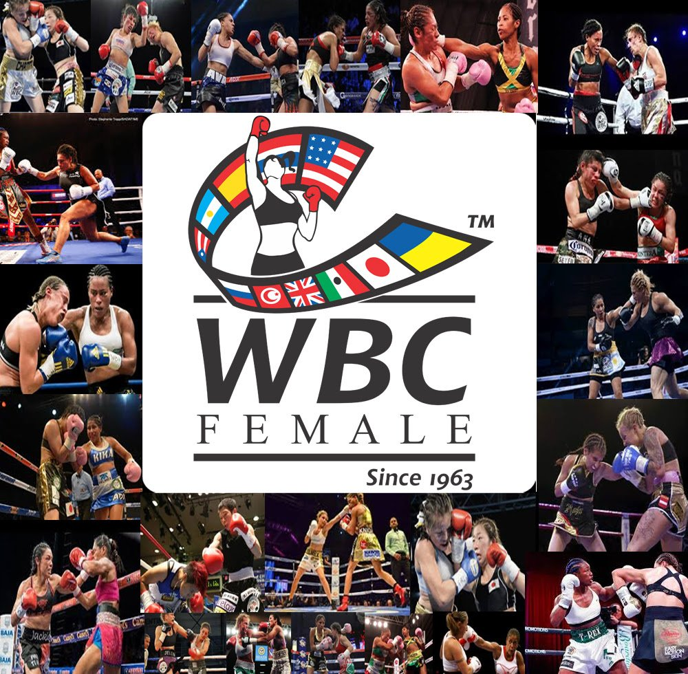 - The World Boxing Council is not a sanctioning body. We are a Governing Body that sanctions fights, always with the interest and safety of the boxers as the most important element. We are not in the business of selling belts. No one in the WBC board and committees takes a salary. We are dedicated to protecting all those who participate in our sport and will not be influenced by popularity when it jeopardizes the life and future life of our boxers.  Our goal is to have exciting fights that the boxer can reflect on years after they leave the ring. Not just a Championship belt, but a quality of life worth fighting for.