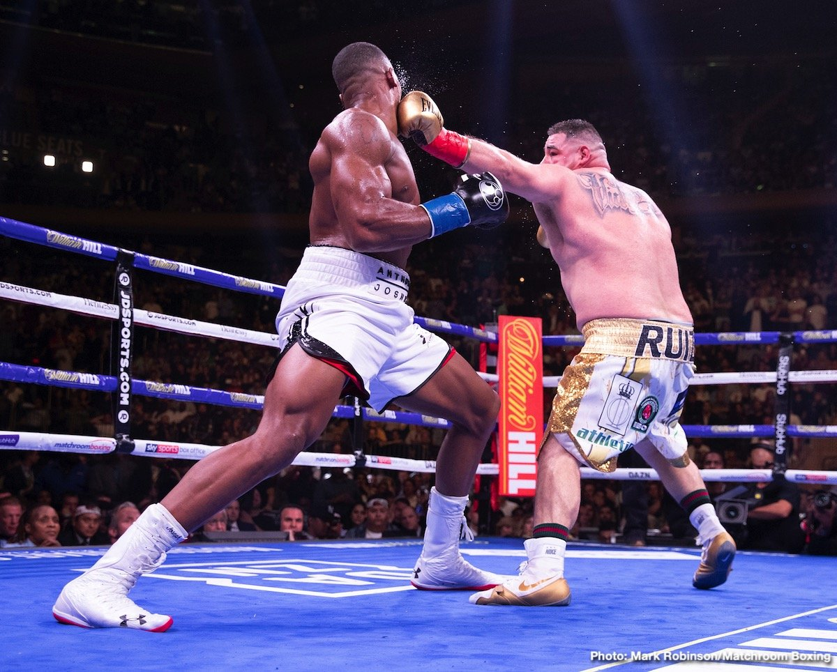 Andy Ruiz Jr. shocked the world last June in stopping IBF/WBA/WBO heavyweight champion Anthony Joshua in the 7th round to rip his three titles away from him in New York. The victory made Ruiz Jr. (33-1, 22 KOs) the first Mexican heavyweight world champion, and turned him into a minor celebrity overnight.