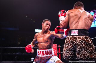 "Jezreel Corrales - Jeison Rosario captured the WBA and IBF Super Welterweight World titles with a shocking fifth round stoppage of hometown favorite Julian ""J-Rock"" Williams Saturday night in the FOX PBC Fight Night main event and on FOX Deportes from Temple University's Liacouras Center in Philadelphia."