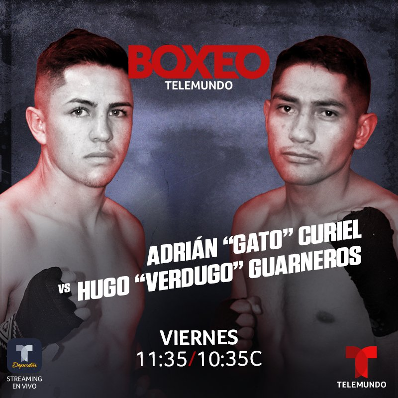 """Adrian Curiel, Hugo Guarneros - Boxeo Telemundo, the #1 Spanish-language boxing program in the U.S., wraps up its first season of 2020 this Friday, March 13 at 11:35 p.m. ET, live on Telemundo, featuring two flyweights as they battle for the vacant WBC International title. Adrian """"Gatico"""" Curiel will square off against former """"Cinturon De Oro"""" champion Hugo """"Verdugo"""" Guarneros, live from Mexico City."""