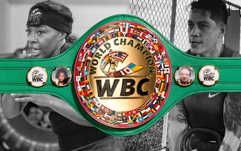 On September 18, 2018, Franchon Crews-Dezurn conquered the WBC Female Super Middleweight World Championship, which she successfully defended on September 19, 2019. On January 11, 2019, Alejandra Jimenez defeated then World Champion Crews-Dezurn and conquered the WBC Female Super Middleweight World Championship.