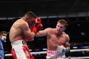 Yildirim got $2.5M, Canelo eight-figures for match