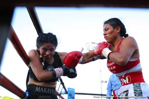 Amanda Serrano, Daniela Bermudez - Boxing Results