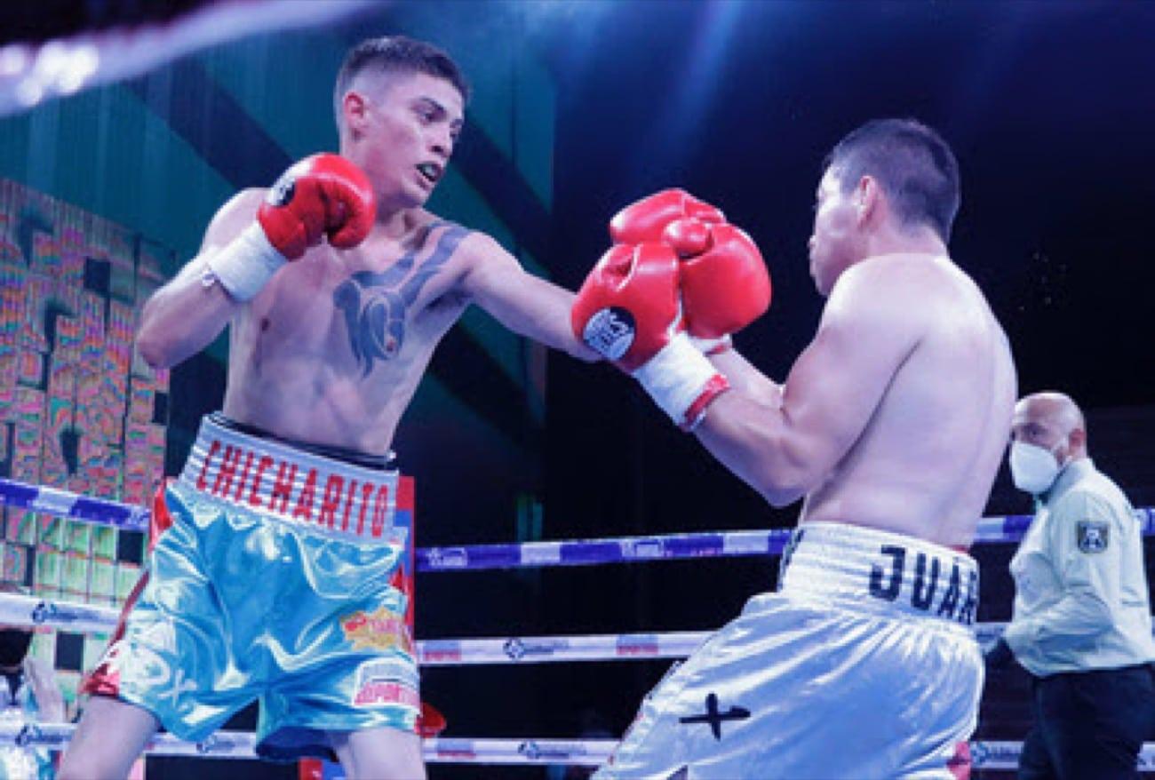 Cristian Gonzalez - Boxing Results