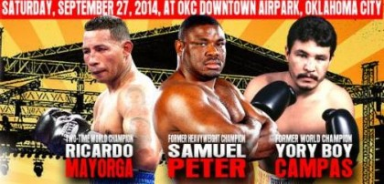 Ricardo Mayorga Samuel Peter Boxing News