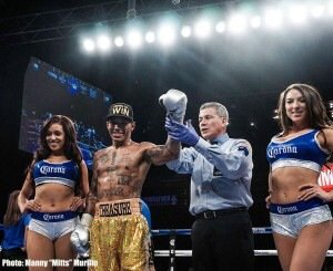 Ashley Theophane Boxing News British Boxing