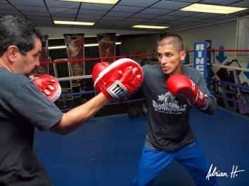Stuart Hall British Boxing