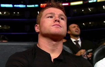 Alvarez vs. Mayweather Jr Floyd Mayweather Jr Saul Alvarez Boxing News