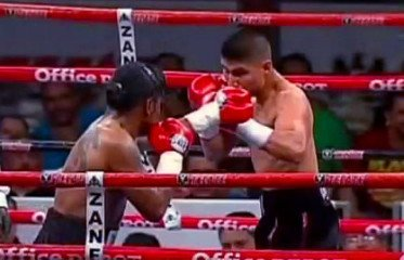 Mikey Garcia - By Joseph Herron: With an HBO date already scheduled for November 10th, and a big title fight with WBO Featherweight Champion Orlando Salido on the 2013 horizon, 126 pound contender Mikey Garcia (29-0, 25 KOs) is ready to make his mark in boxing.