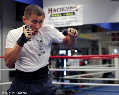 Gabriel Rosado Gennady Golovkin Golovkin vs. Rosado Boxing News